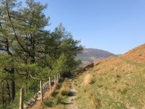 The Cumberland Way